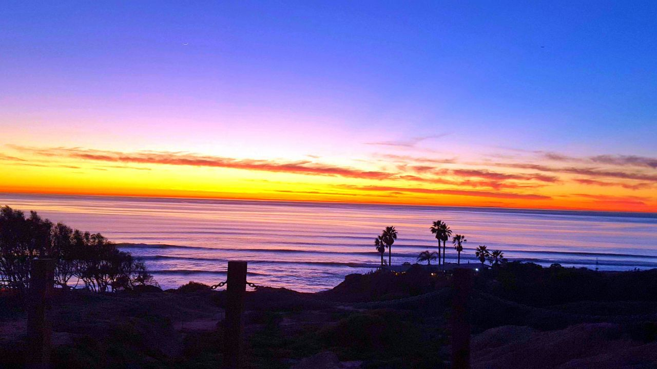 One of my favorite photos! Sunset SoCal San Diego Palm Trees Beach Ocean Pacific Ocean California Love California Myhappyplace My Perspective Livelaughlove♡ My Happy Place  Nature Photography Reedited