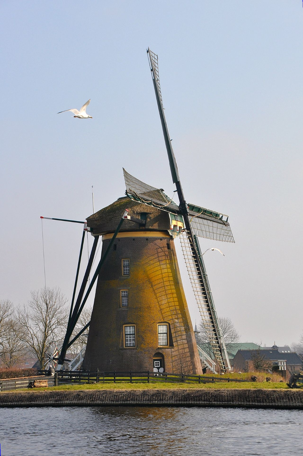Windmill Mill Dutch Countyside Windmills Mills Countryside Windmolen Windmills Photography Molen Dreamscapes Of Holland Farmscape Dutch Landscape Counrtylife Landscape Dutch Landscapes Counrtyside Dutch Windmill Dutch Mills Landscapes Dutch Dreamscapes Farmland EyeEm Best Shots - Nature Landscape_photography Taking Photos Check This Out