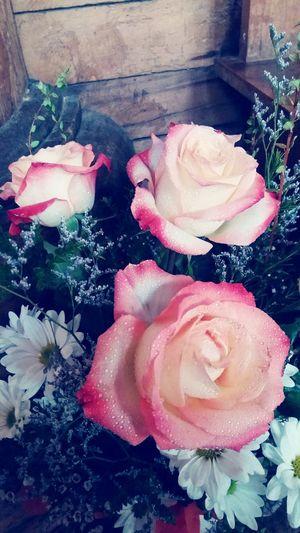 Roses🌹 flowers