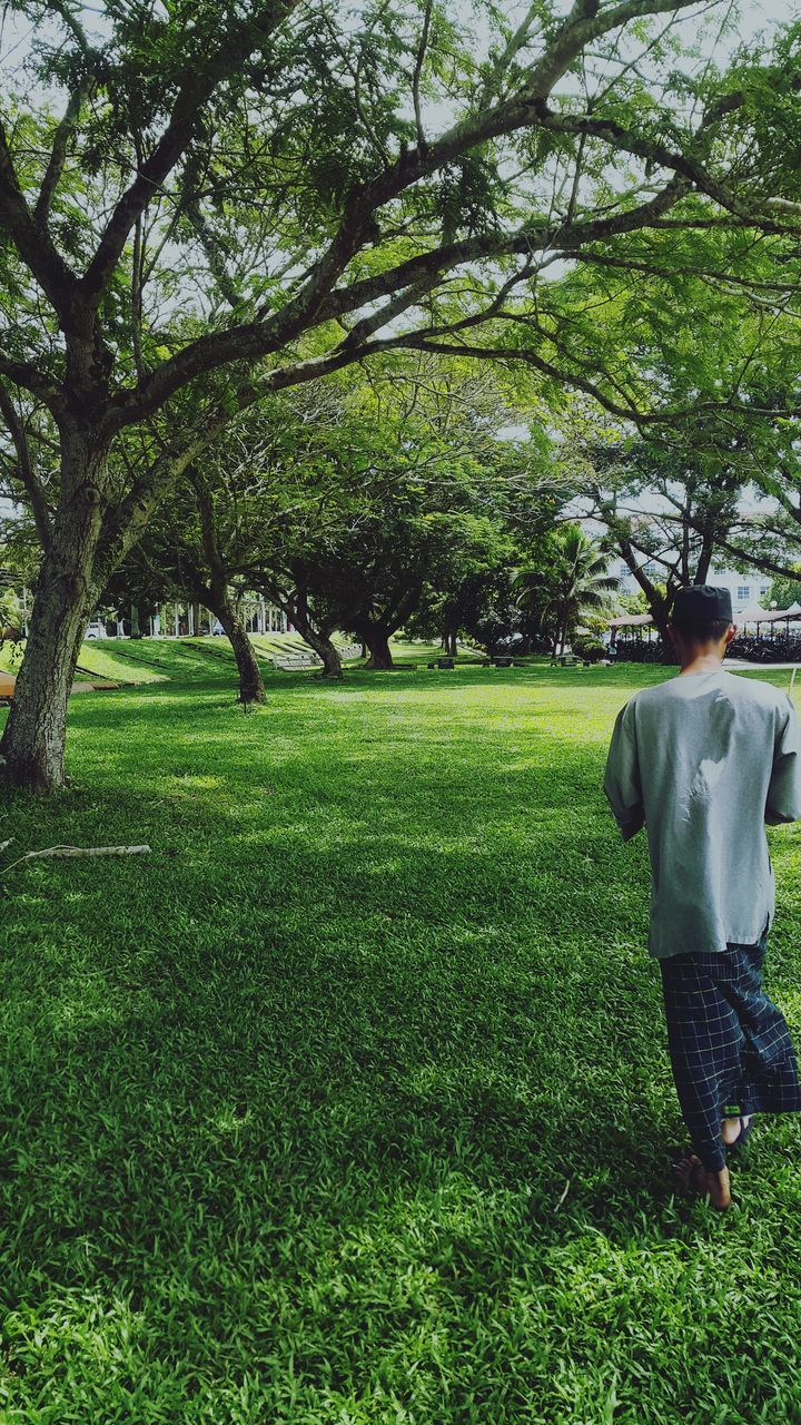 rear view, tree, grass, one person, full length, real people, growth, green color, walking, day, standing, outdoors, nature, men, sky, people, adult