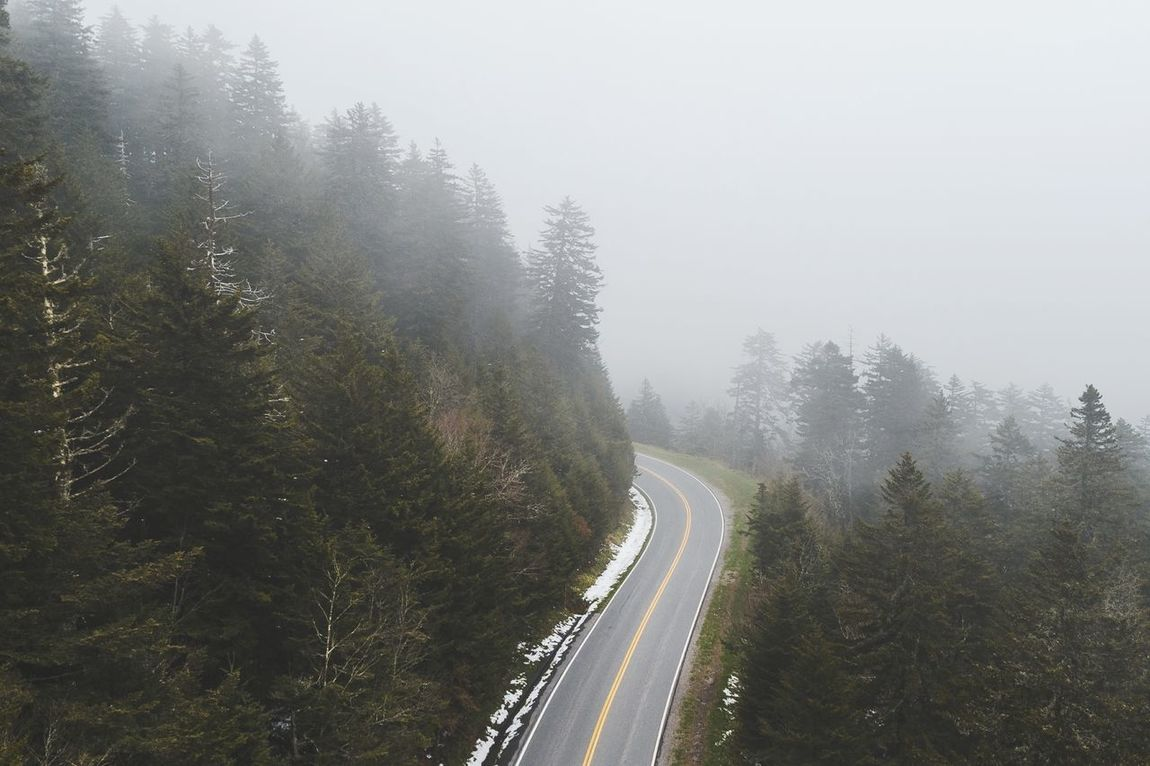 Road Tree No People Transportation Fog Curve Outdoors Day Nature Sky Weather Foggy Morning Travel Destinations Sky And Clouds Forest Aerial Road Street Aerial View Drone  Travel Wanderlust Wilderness Roadtrip