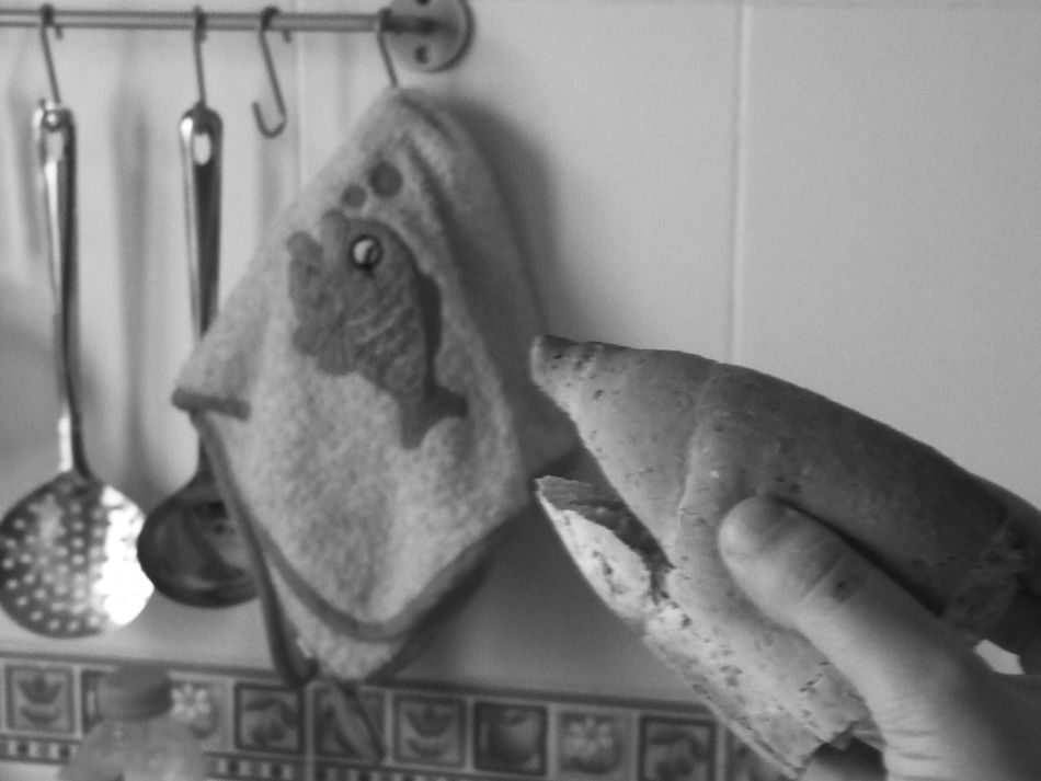 Bread Bread Shark Close-up Dangerous Shark Dangerous Surf Fish Fish In Cloth Focus On Foreground Home Kitchen Scene Portrait Saucepan Scared Scared Fish Sea Scene Share Your Adventure Shark Attack Shark Eating Skimmer Two Is Better Than One