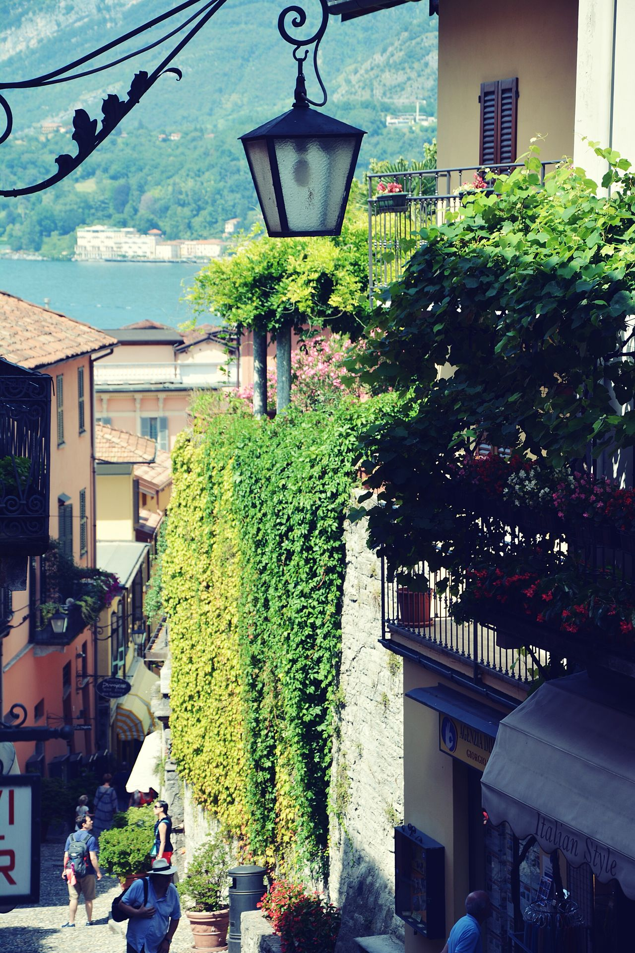 Tiny Street Lake Como Lamp Stairs And Steps Relaxed Life Wine Green Walls