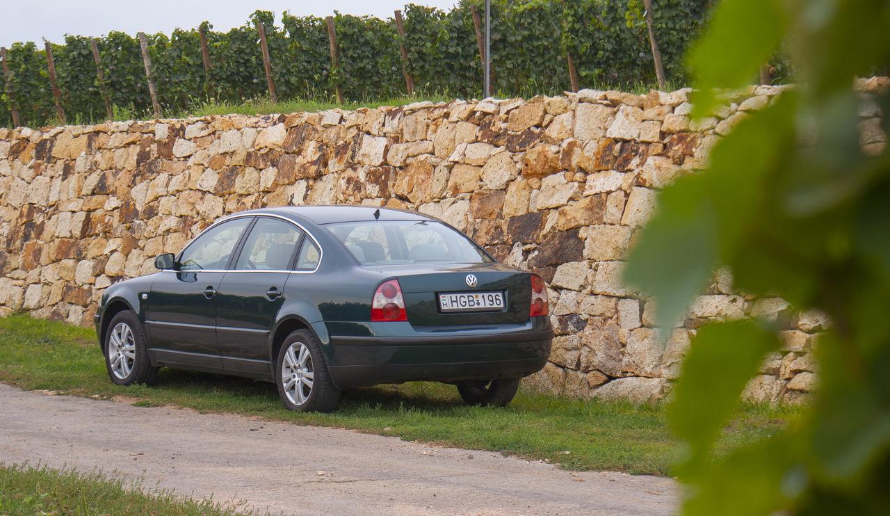 Car Day Nature Passat Stonewall Transportation Vineyard Volkswagen Volkswagen Passat