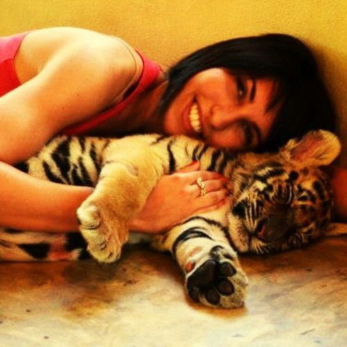 Touch the Tiger ❤️🐯 EyeEmFiveSenses Special Moment Amazing Experience Heartbeat Moments Thailand