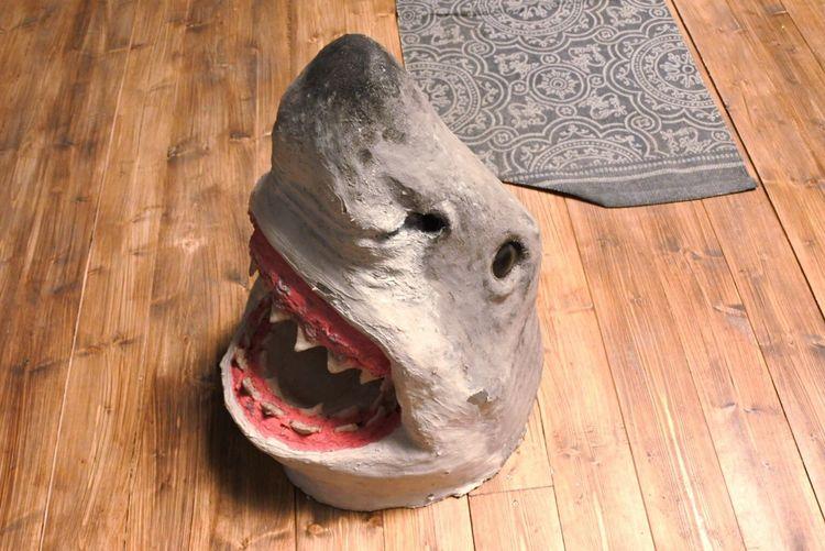 Wood - Material No People Close-up Indoors  Animal Bone Animal Skull Day Shark Masks Wooden Floor Carpet Design Carpet Detail