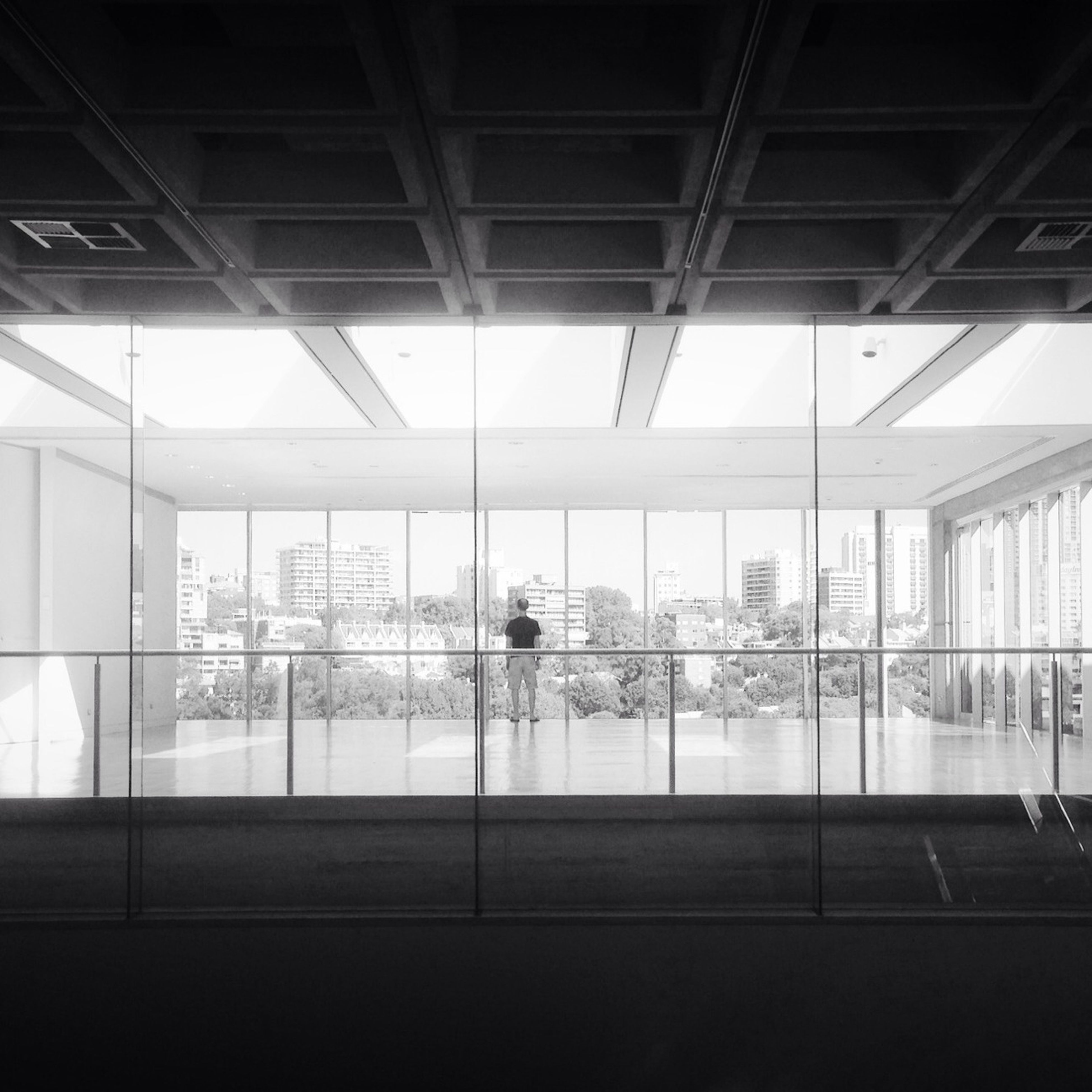 indoors, glass - material, window, architecture, built structure, transparent, modern, glass, building exterior, city, building, reflection, ceiling, day, pattern, no people, tree, geometric shape, sunlight, sky