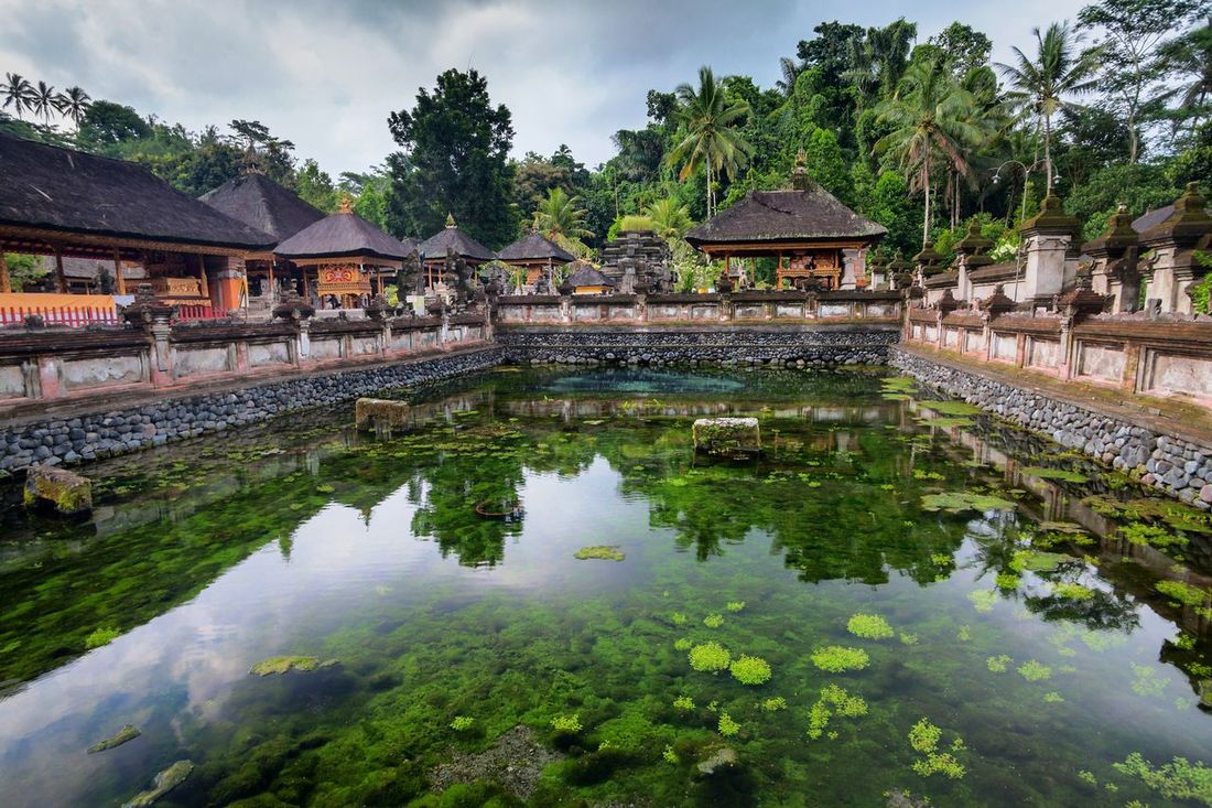 Holiday in Bali, Indonesia - Tirta Empul Holy Water in Tampaksiring Bali Bali, Indonesia Buddism Day Empul Heritage Heritage Site Hindu Hindu Temple Holy Holy Water INDONESIA Outdoors Praying Structure Tampaksiring Temple Tirta Empul Tirta Empul Temple Tirtaempul  Water
