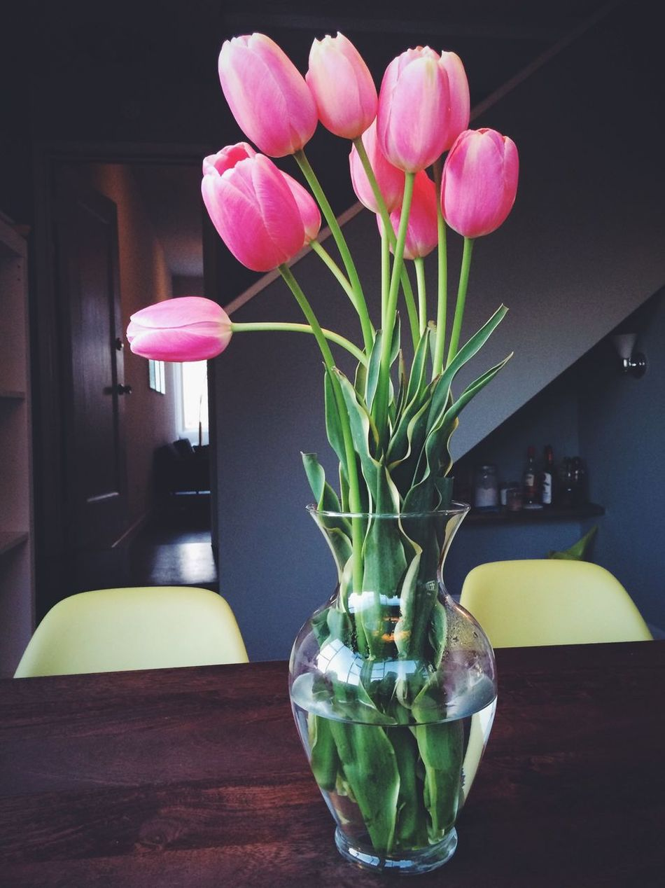 Flower Porn with Tulips