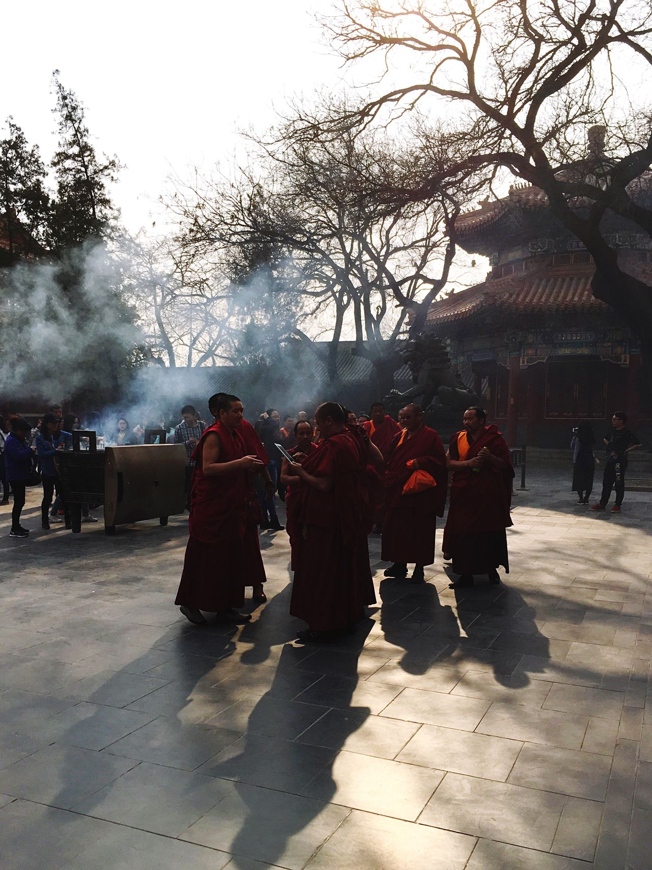 Real People Smoke - Physical Structure Large Group Of People Men Sunlight Tree Shadow Buddhism Buddhist Temple Buddhist Monks Beijing Lama Temple China Incense Incense Sticks Monks Tibetan  Tibetan Buddhism Tibetan Monks