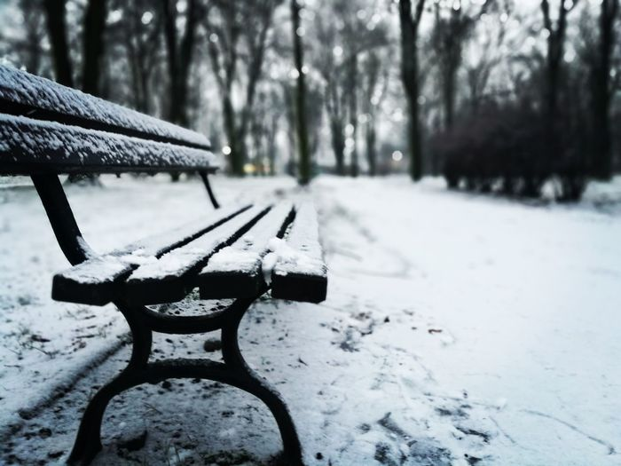 Winter Snow Cold Temperature Weather Park - Man Made Space Outdoors No People Tree Day