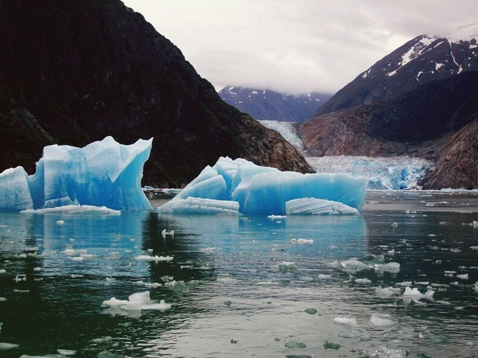 Ice Bergs Tracy arm Alaska!