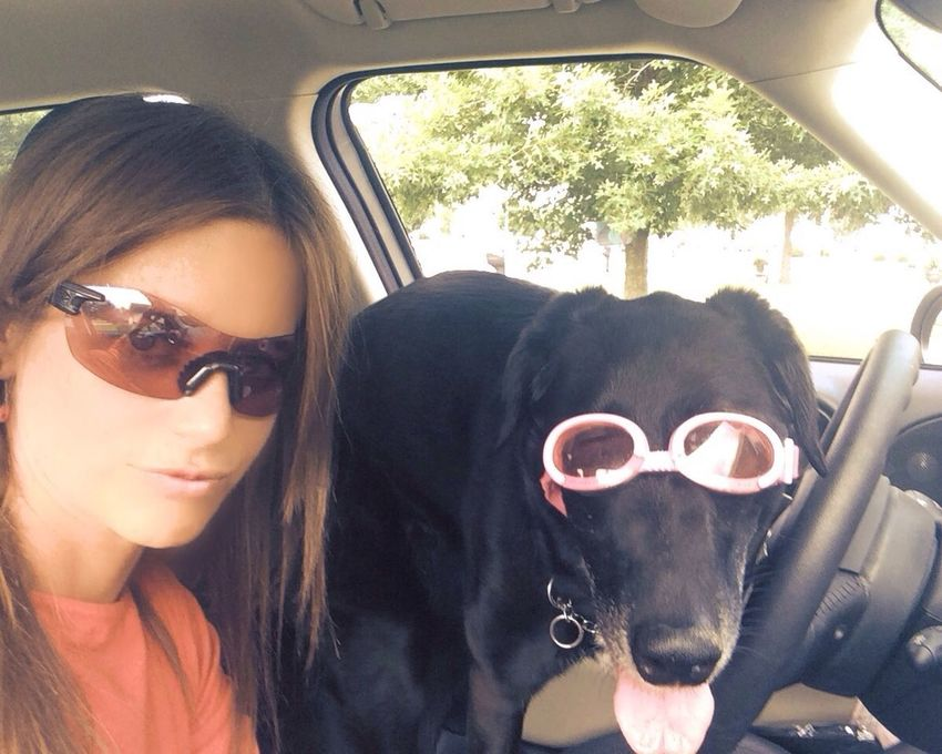 Cruising with my mutt... Guess she's driving today. Her shades are cooler than mine :-) Enjoying Life Taking Photos That's Me A Cool Dog