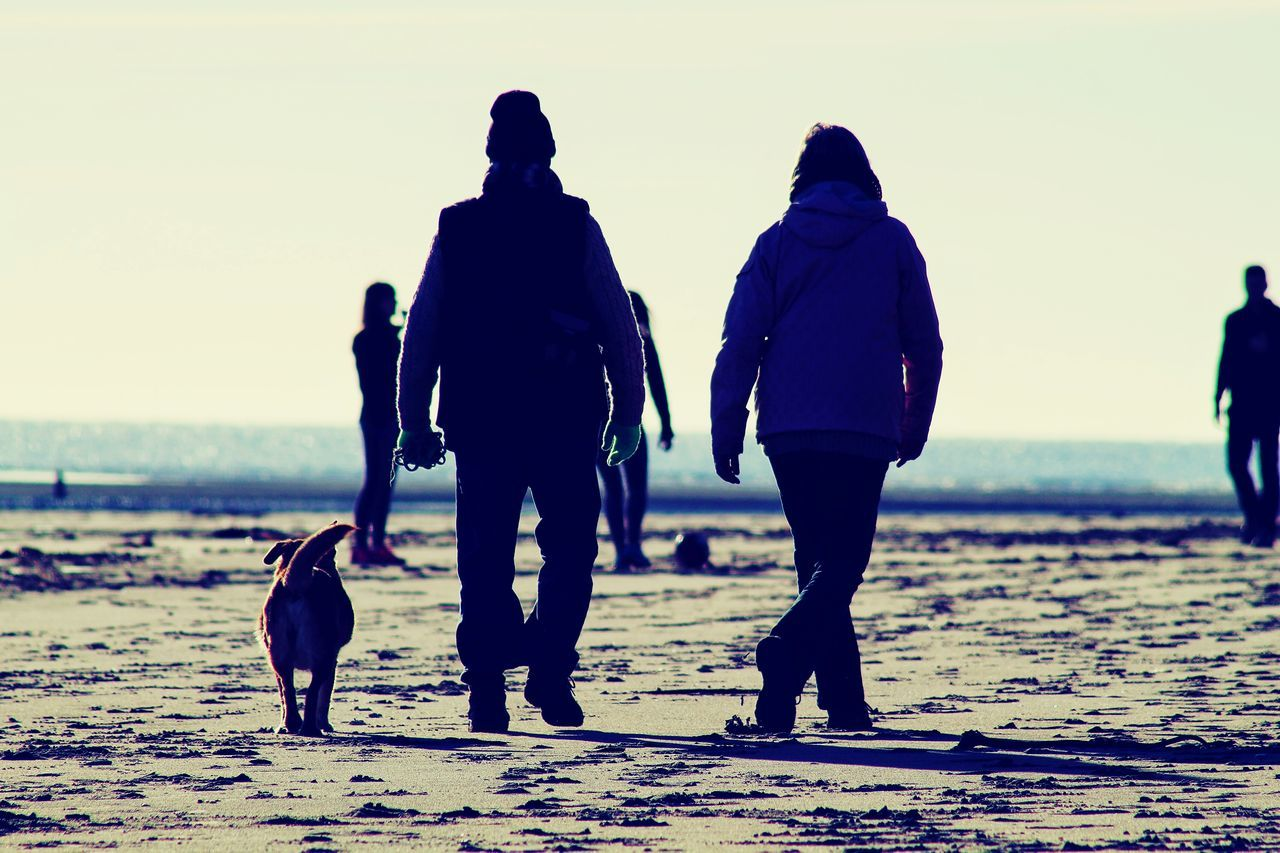 People Walking With Dog On Beach
