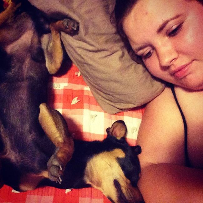 Mommynbaby Myson Mysquishinessoflove Minpin chihuahua terriermix mybaby chiquillo whitegirl