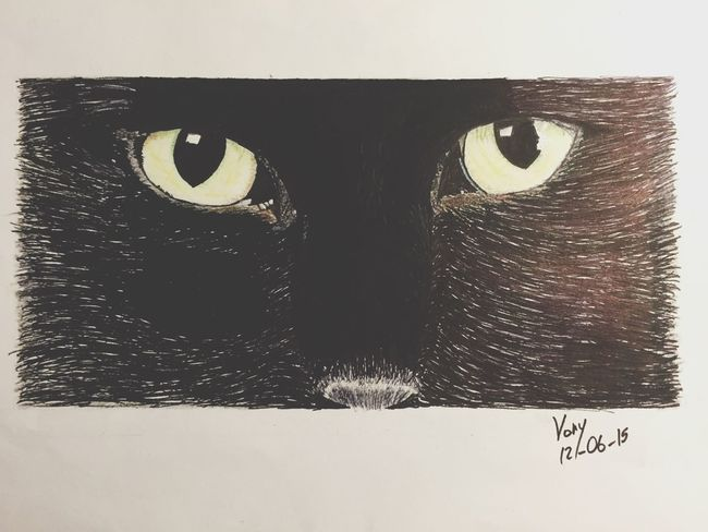 New Drawing 🐱 Drawing Passion Check This Out Handmade By Me Cat Eyes Love Dessin