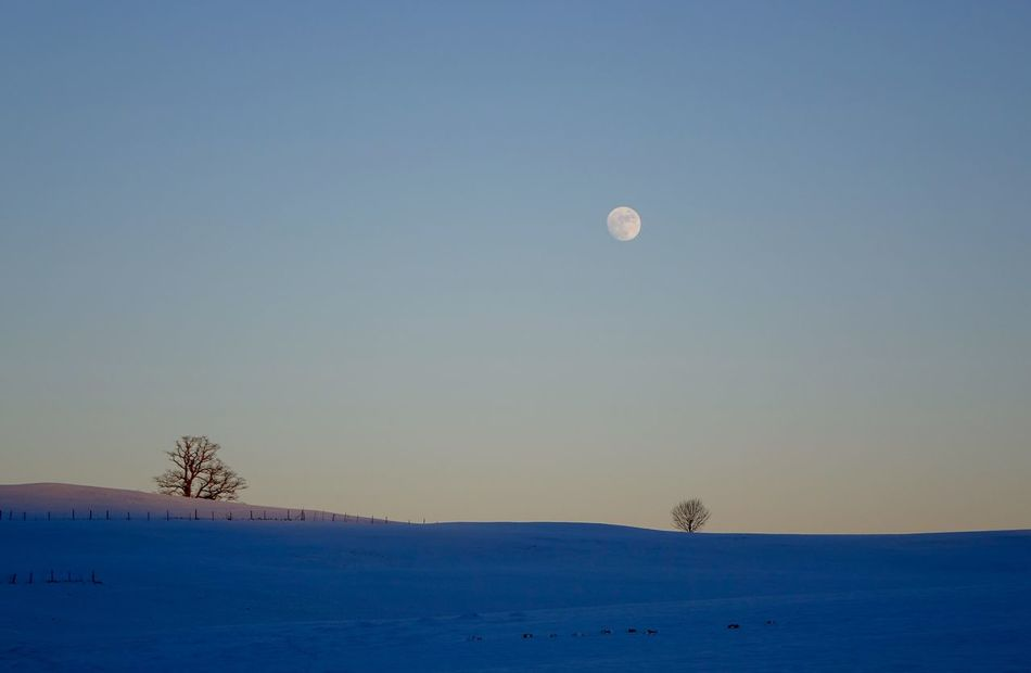 Beautiful stock photos of mond, Beauty In Nature, Clear Sky, Cold Temperature, Covered