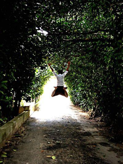 Fukugi tree tunnel Jamp! That's Me