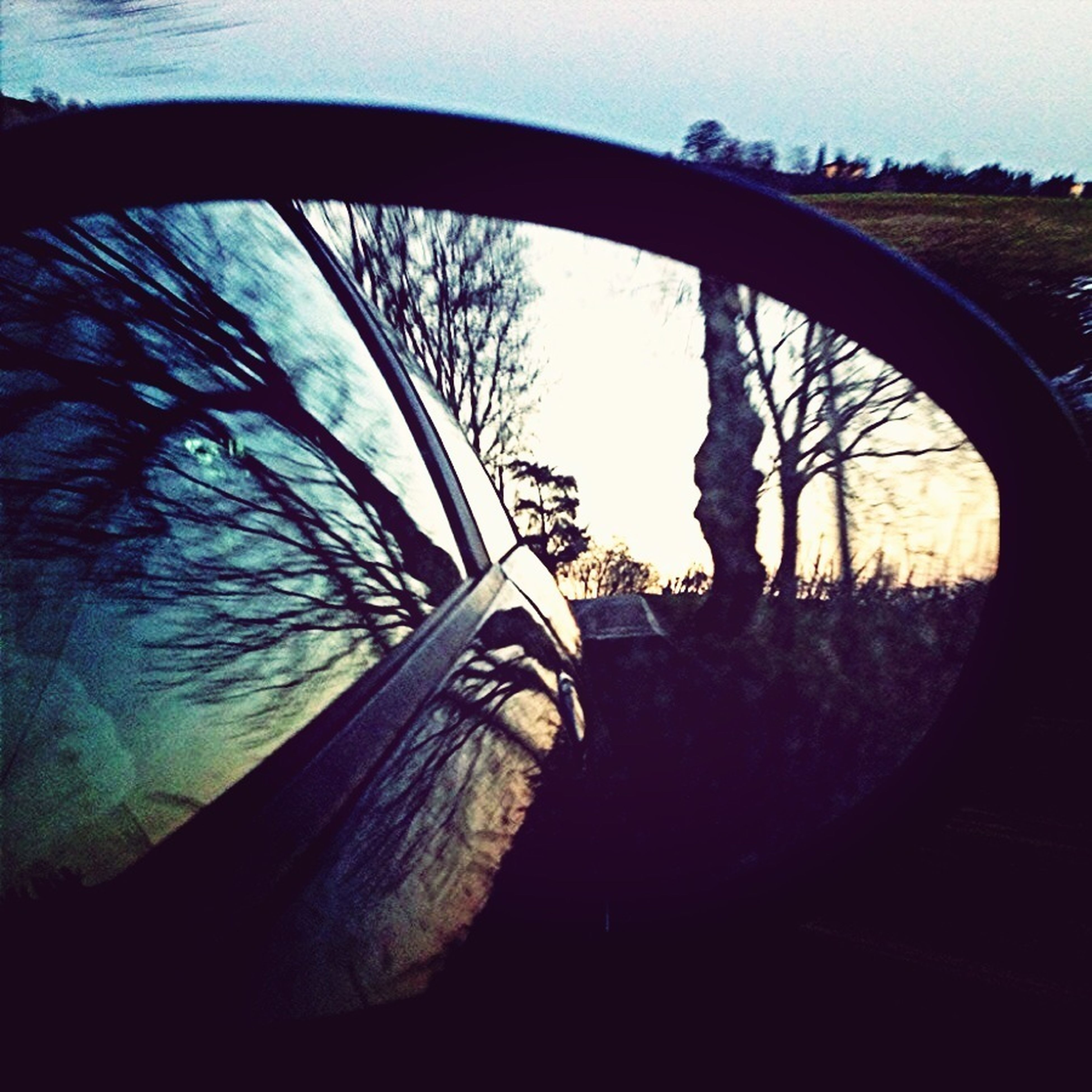 transportation, mode of transport, tree, land vehicle, reflection, sky, part of, wheel, cropped, circle, close-up, car, no people, day, outdoors, bicycle, road, nature, tire, side-view mirror