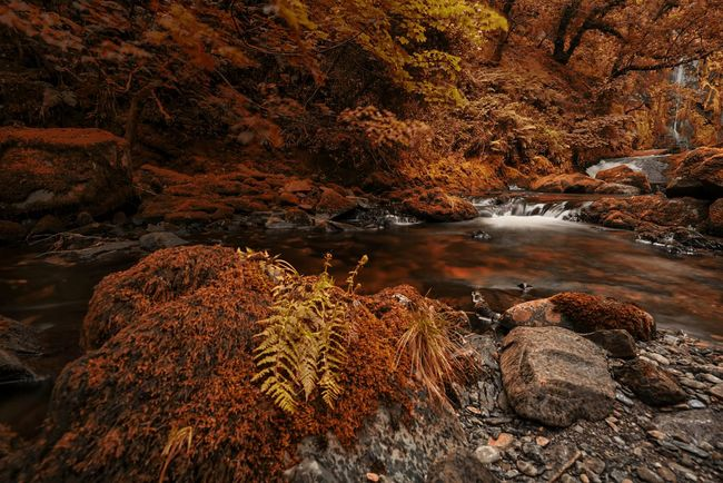 Red River Red Red Leaves Red Landscape The Great Outdoors - 2016 EyeEm Awards The Great Outdoors With Adobe Winter Landscape Autumn🍁🍁🍁 Autumn Colors Autumn Leaves River View River Waterfall Beauty In Nature Fantasy Landscapes Riverscape Autumn Autumn Colours(null) Long Exposure Beautiful Nature