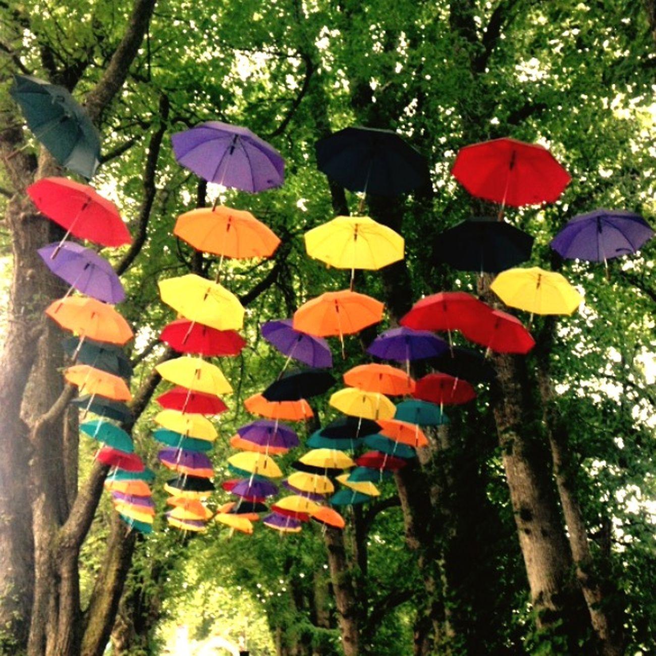 Umbrellas Act Decorations Umbrellasky Colourful Decoration Belladrum Festival Festival