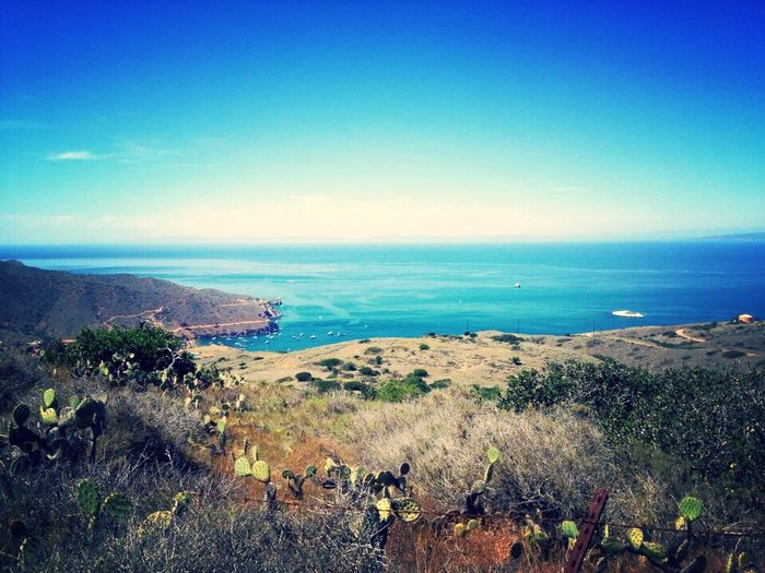 Tranquility. On A Hike Traveling Nature Ocean