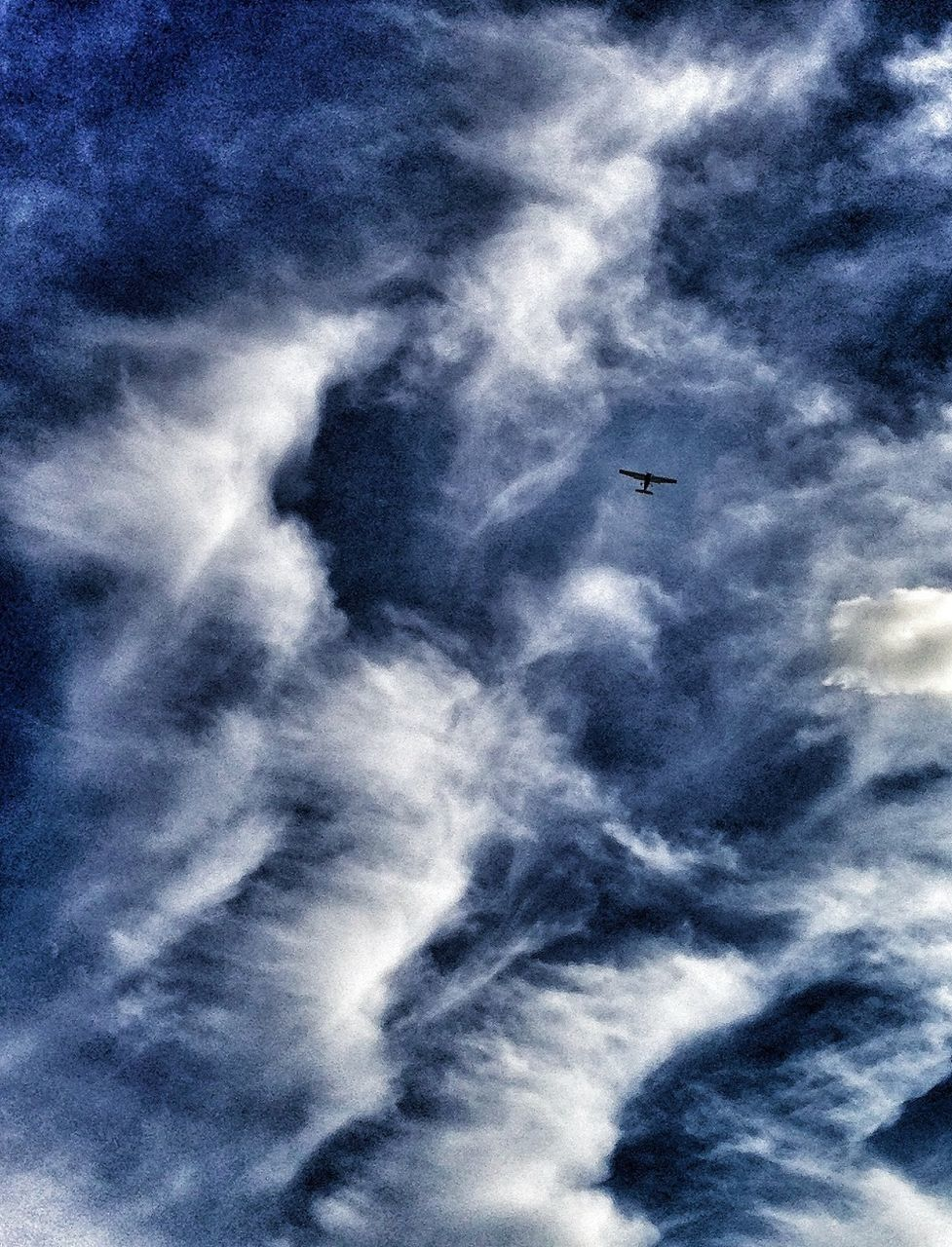 flying, low angle view, sky, airplane, cloud - sky, mid-air, no people, transportation, day, air vehicle, outdoors, sky only, journey, blue, nature, bird, animal themes, beauty in nature, vapor trail