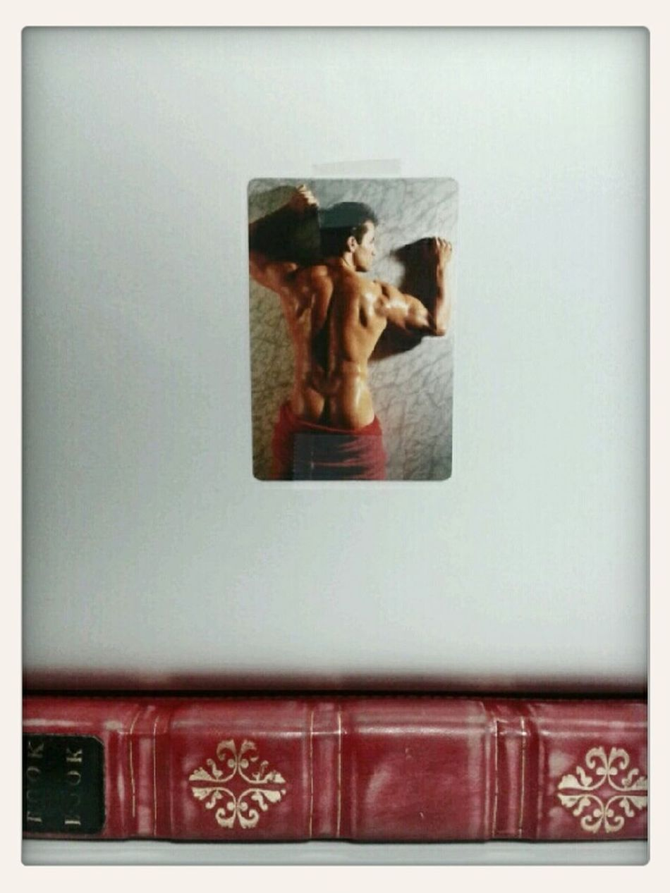 Apple MacBook Pro Fireman BookBook
