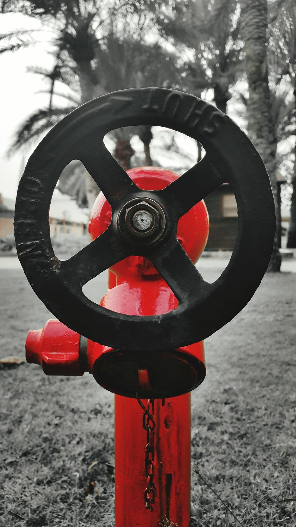 For the love of red! Red Equipment Fire Hydrant No People Note4photography Outdoors