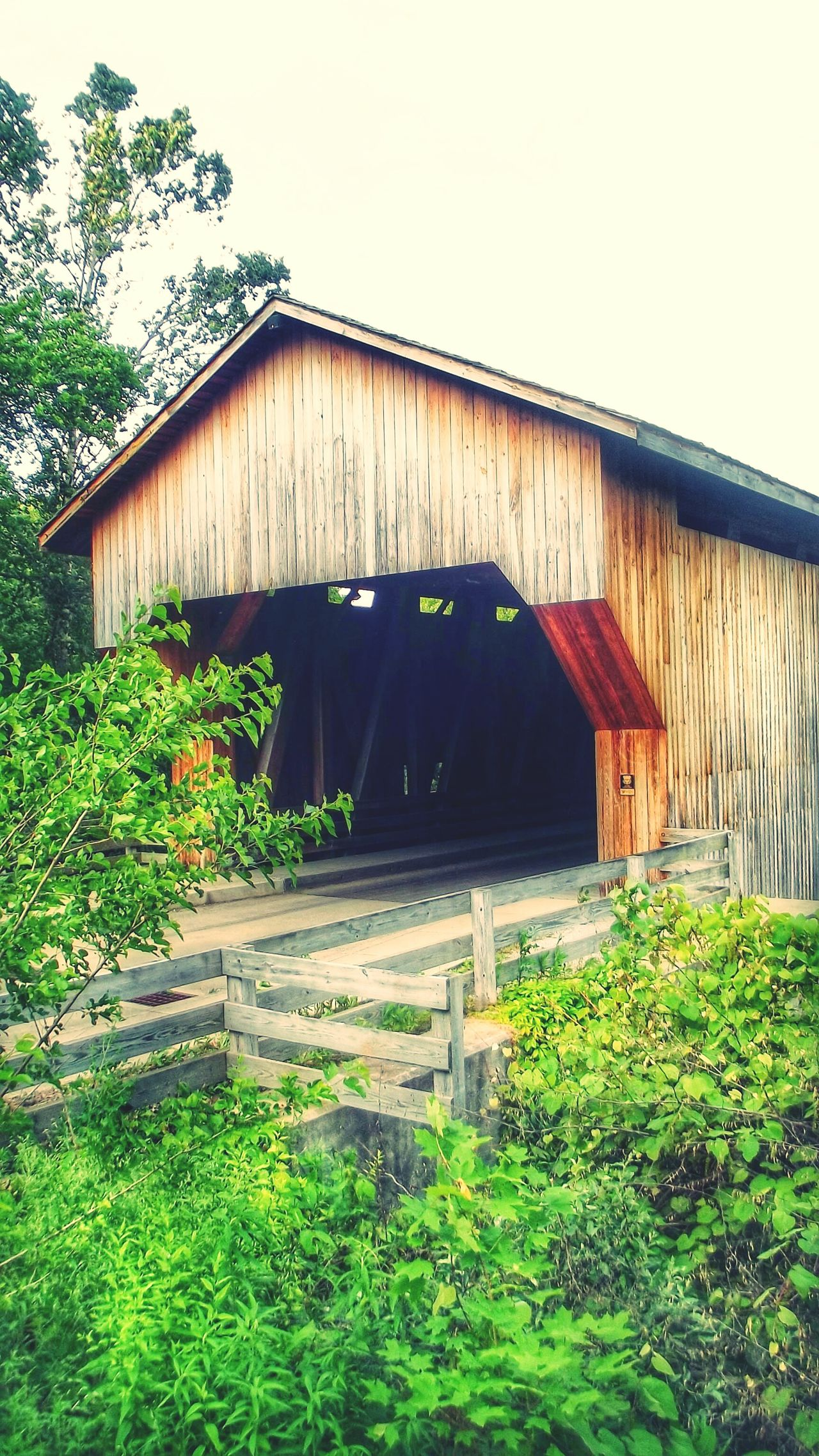 Built Structure Outdoors No People Wood - Material Green Color Architecture Building Exterior EyeEm Nature Lover Outdoor Photography Eyeemphotography Covered Bridge