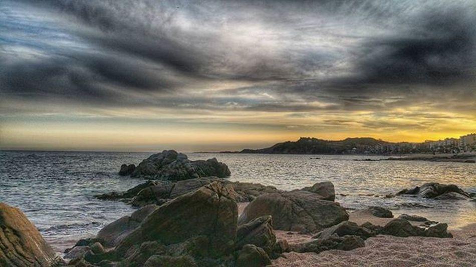 SENSE TU *Terapia de Shok* No s'equivoca l'ocell que assajant el primer vol cau a terra...s'equivoca aquell que per por a caure renúncia a volar. Bona nit 🌃 Lloret_es_molt_més Rd_lloret Estaes_catalunia Team_of_all Gaudeix_cat Clikcat Fotoencantada ViuLloret Sunrise_sunsets_badalona Frameable Loves_utopia Loves_catalunya Mapassionacatalunya Raconsde_catalunya World_great Incostabrava Ok_catalunya Elmeupetit_pais Descobreixcatalunya Like_girona WORLD_BESTSKY Spain_bestsunset_ Geopx Sky_sultans Spain_bestsky tgif_sunset skyddiction sunrise_and_sunsets ok_sky