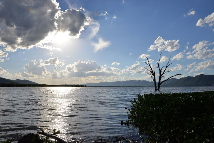 Hartebeespoort dam . South Africa 🇿🇦 Sky Nature Tranquility Beauty In Nature Scenics Tranquil Scene Sea Tree Sunlight Water Cloud - Sky No People Outdoors Day Hartbeespoort Dam Meerhof Hartebeespoort