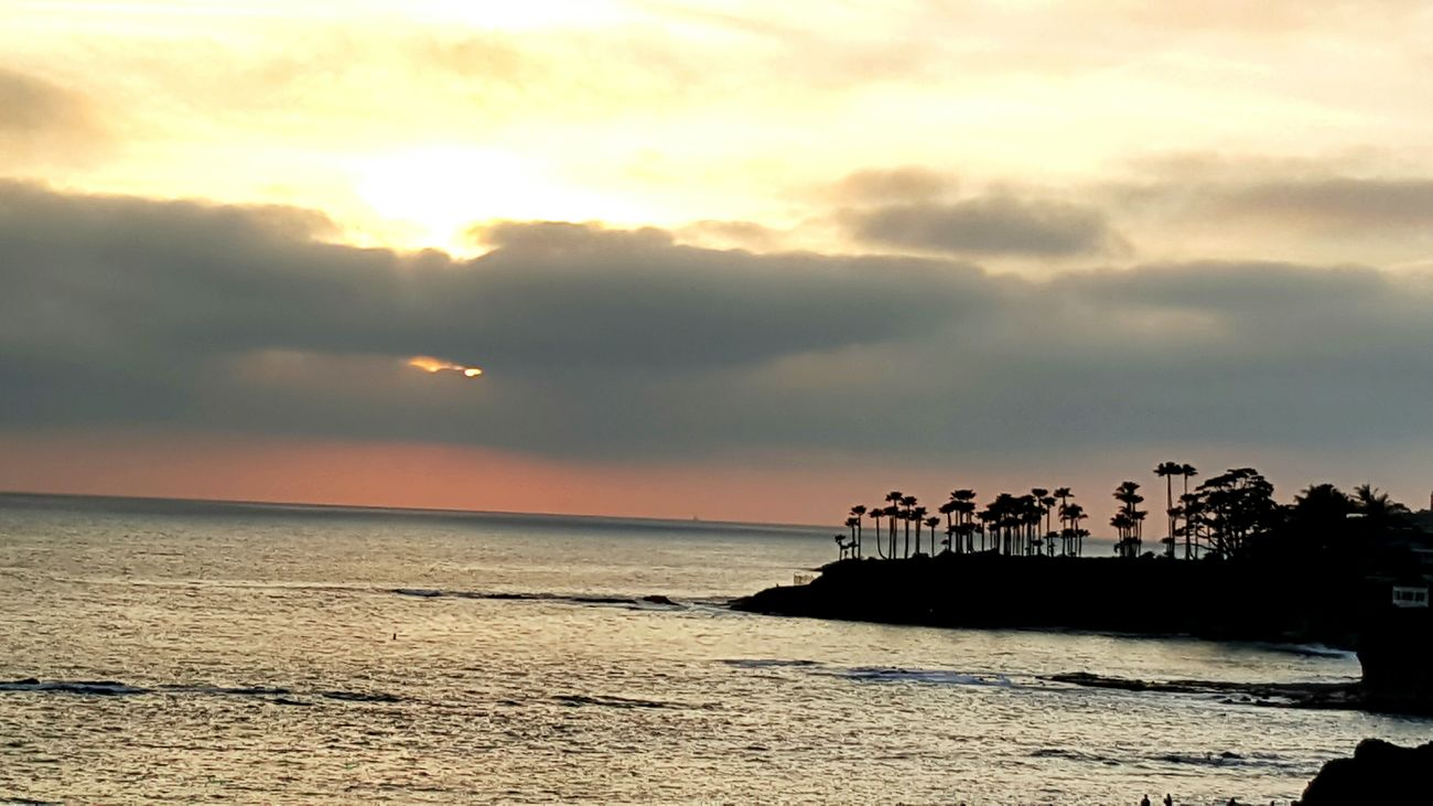 Sunset at Heisler Park, CA Heislerpark Laguna Beach Sunset Palm Trees Pacific Ocean