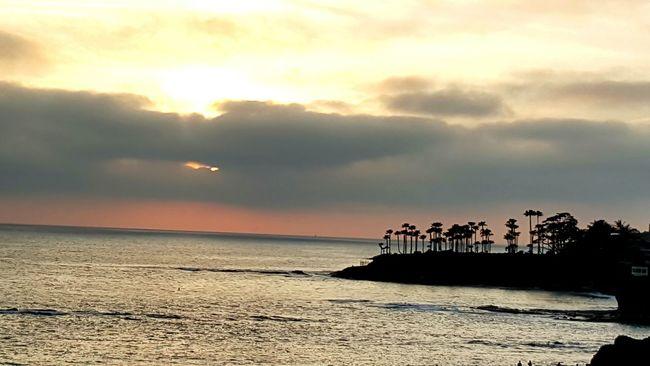 Sunset at Heisler Park, CA Heislerpark Laguna Beach Sunset Palm Trees Pacific Ocean