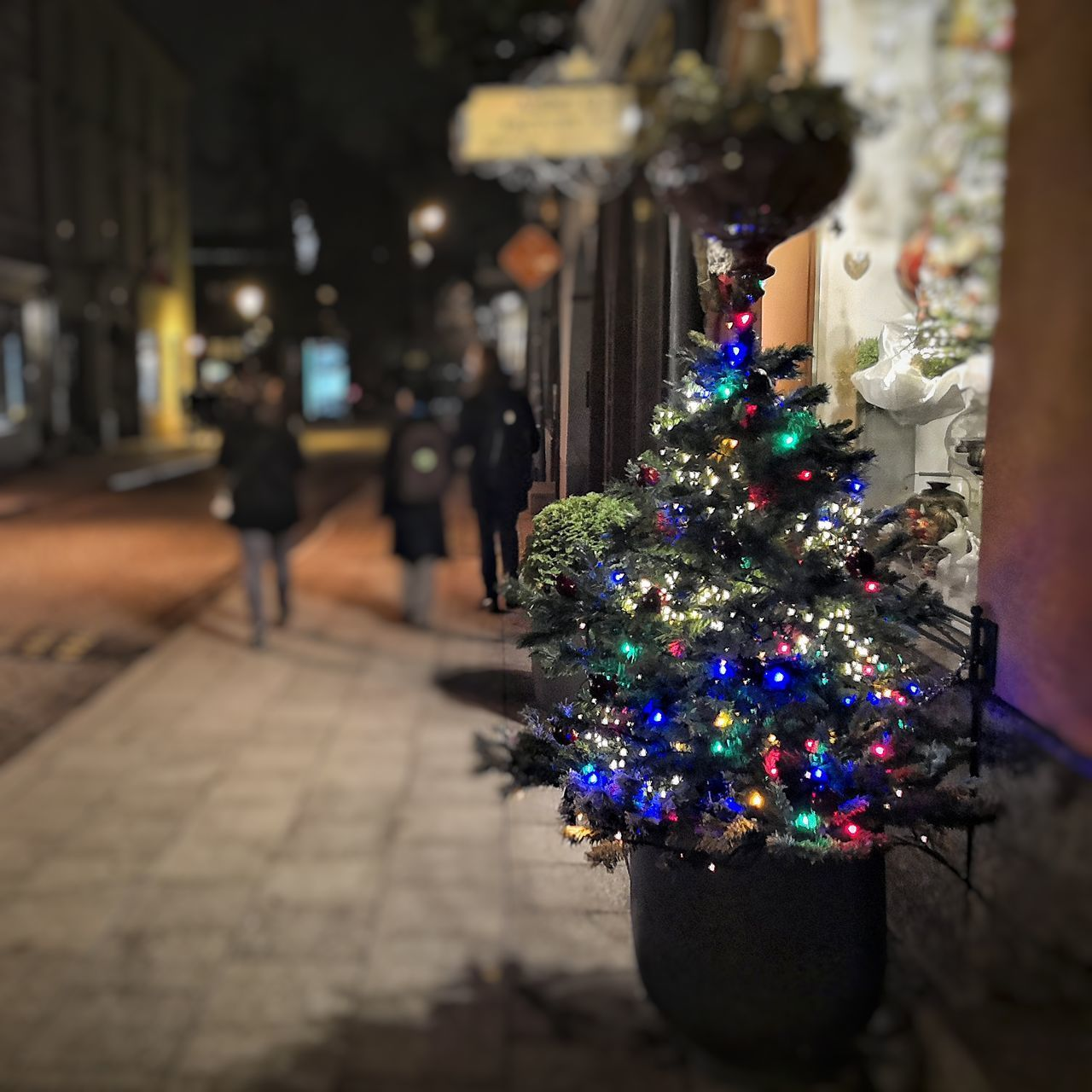 Are you ready? Christmas Christmas Decoration Christmas Tree Celebration Night Christmas Lights Illuminated Christmas Ornament Holiday - Event Outdoors City Vilnius Lithuania Vilnius Old Town Pilies Gatvė Kaledos Night City Lights