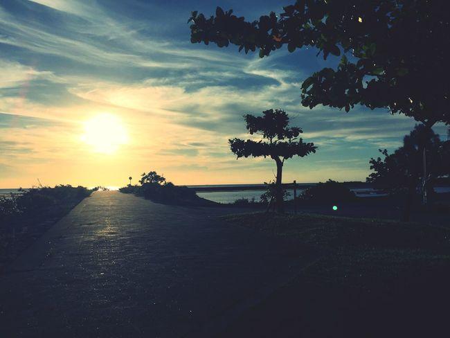 Okinawa Sunset Beach Summer Beautiful Enjoying The Sun Iland Landscape Trees IPhon6