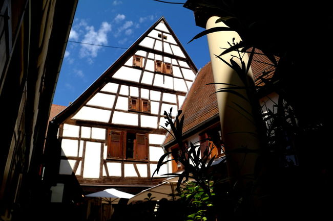 Alsace Architecture Blue Sky Built Structure Cityscapes Colmar Colmar, Alsace, France Colorful Elsass Eye4photography  EyeEm Best Shots EyeEm Gallery EyeEmBestPics Fachwerkhaus France From My Point Of View Low Angle View Tourism Window Windows
