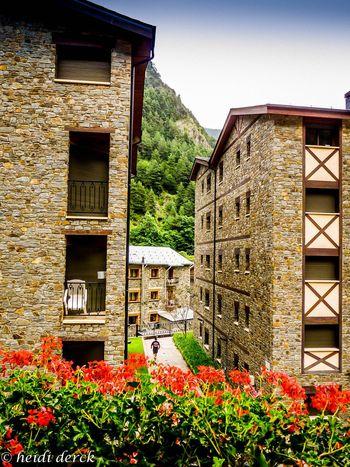 Andorra Check This Out Pal Arinsal Hello World Taking Photos Enjoying Life Close-up Taking Photos Photo♡ Photoshoot