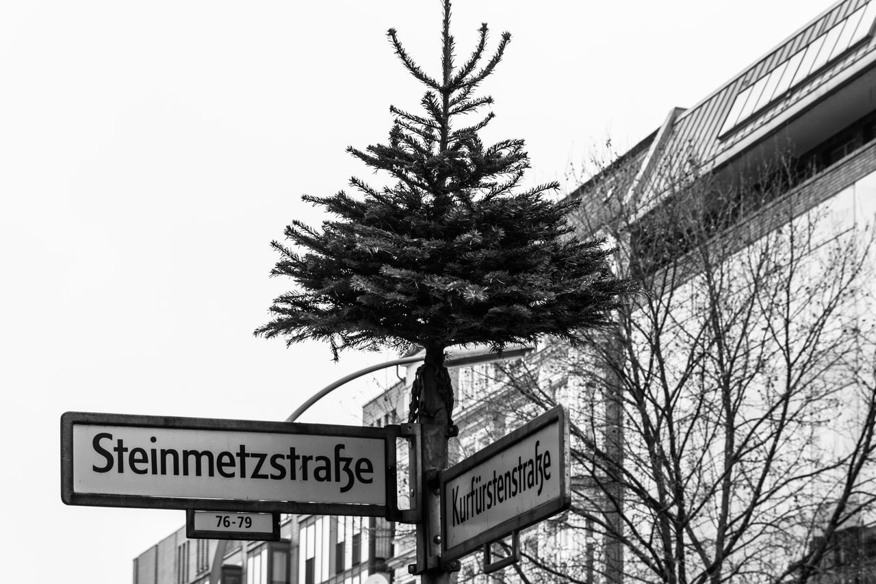 Berlin Blackandwhite City Life Kreuzberg Low Angle View Monochrome No People Outdoors Park Schwarzweiß Street Sign Winter Xmas Tree