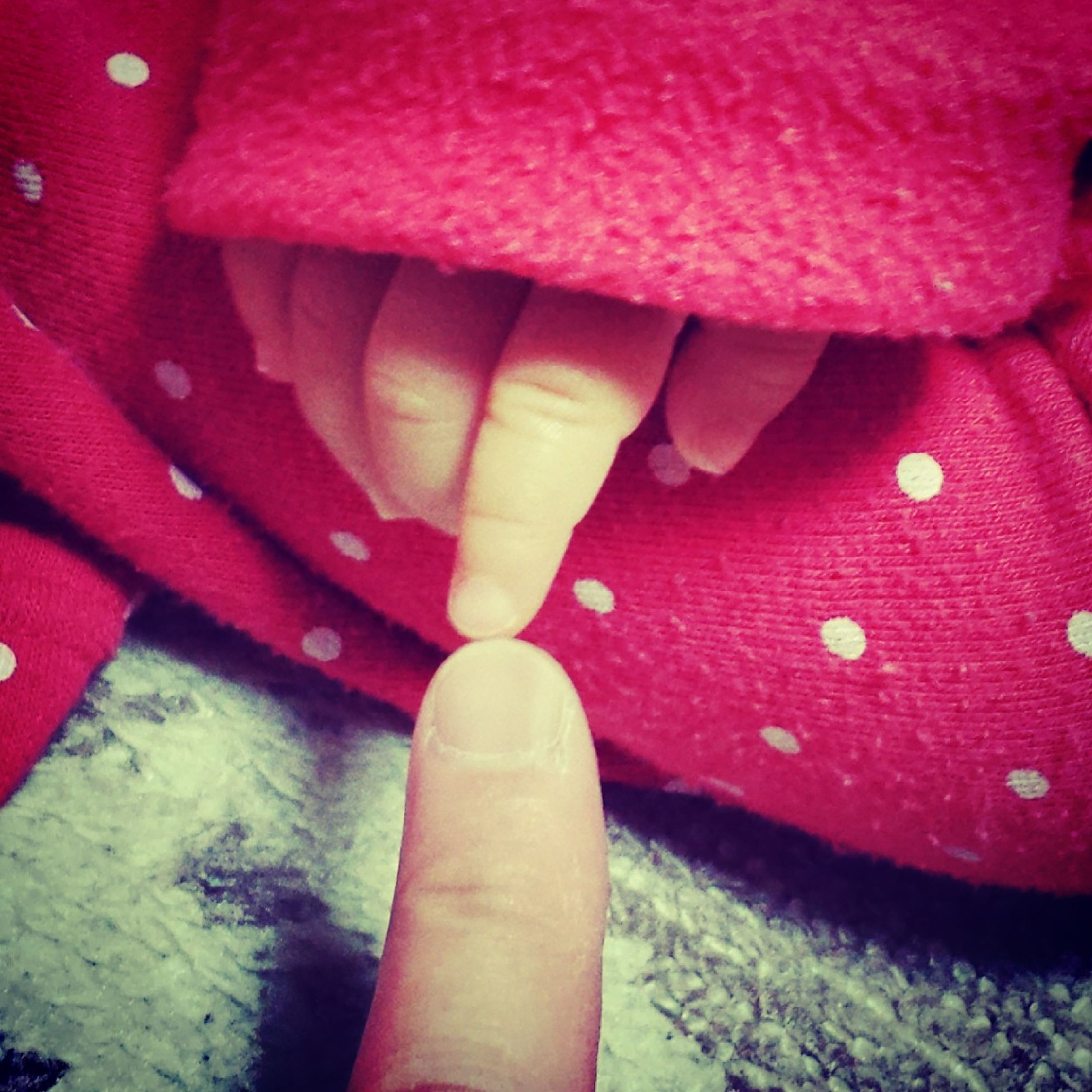 red, person, indoors, part of, lifestyles, holding, cropped, low section, close-up, pink color, human finger, leisure activity, personal perspective, unrecognizable person, human foot