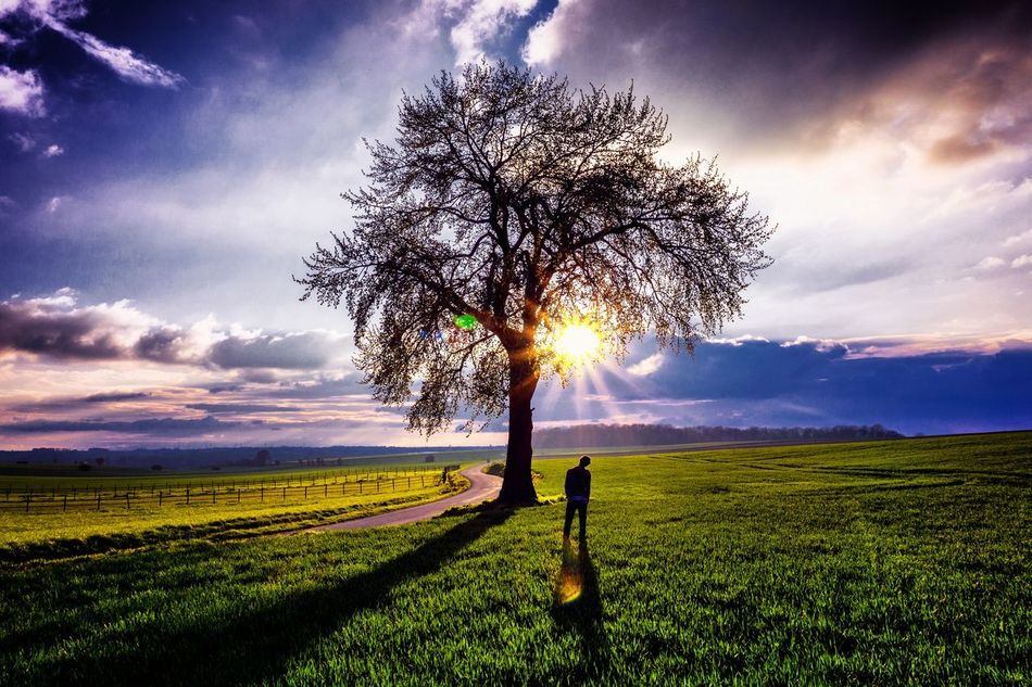 Let's the morning starshine... Long Goodbye Tranquil Scene Eye4photography  Serene Outdoors Eyeem Photography Travel Destinations Serenity Colors Colorful Sunset Tree Tree_collection  Tree And Sky Countryside Serenity Nature_collection Serenity In Nature