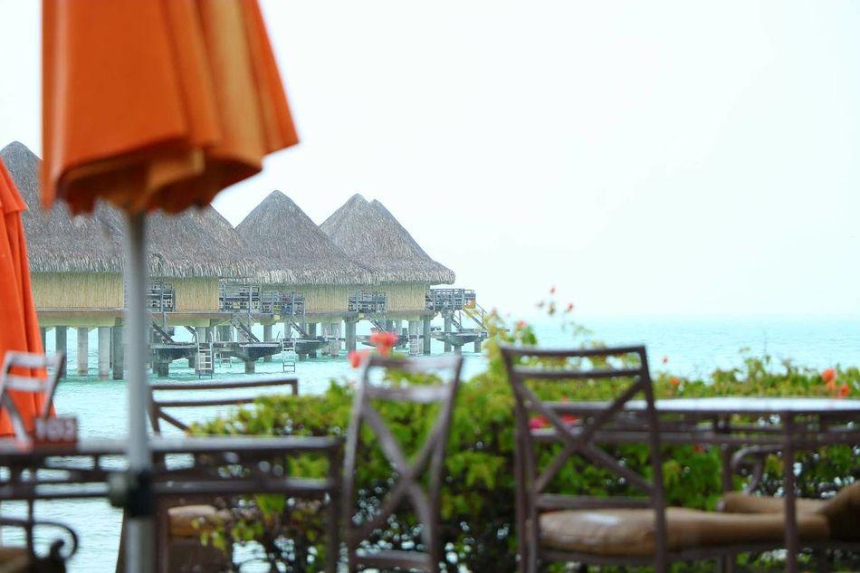 BoraBora Tahiti Overwater Bungalow Resort Sky Nature Outdoors No People Day Tree Close-up