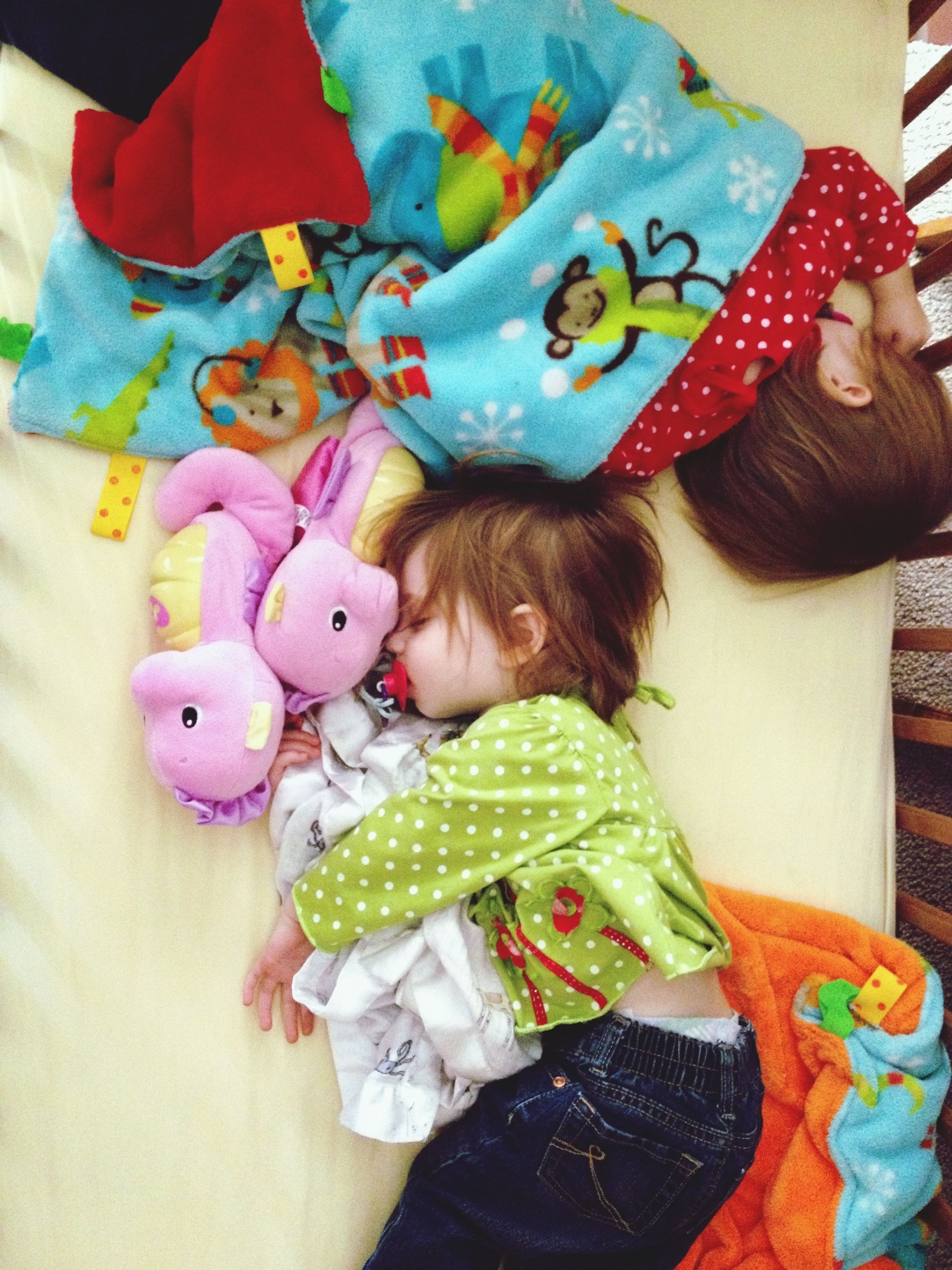 indoors, childhood, toy, multi colored, high angle view, holding, elementary age, lifestyles, leisure activity, cute, variation, innocence, still life, creativity, animal representation, casual clothing, home interior, girls
