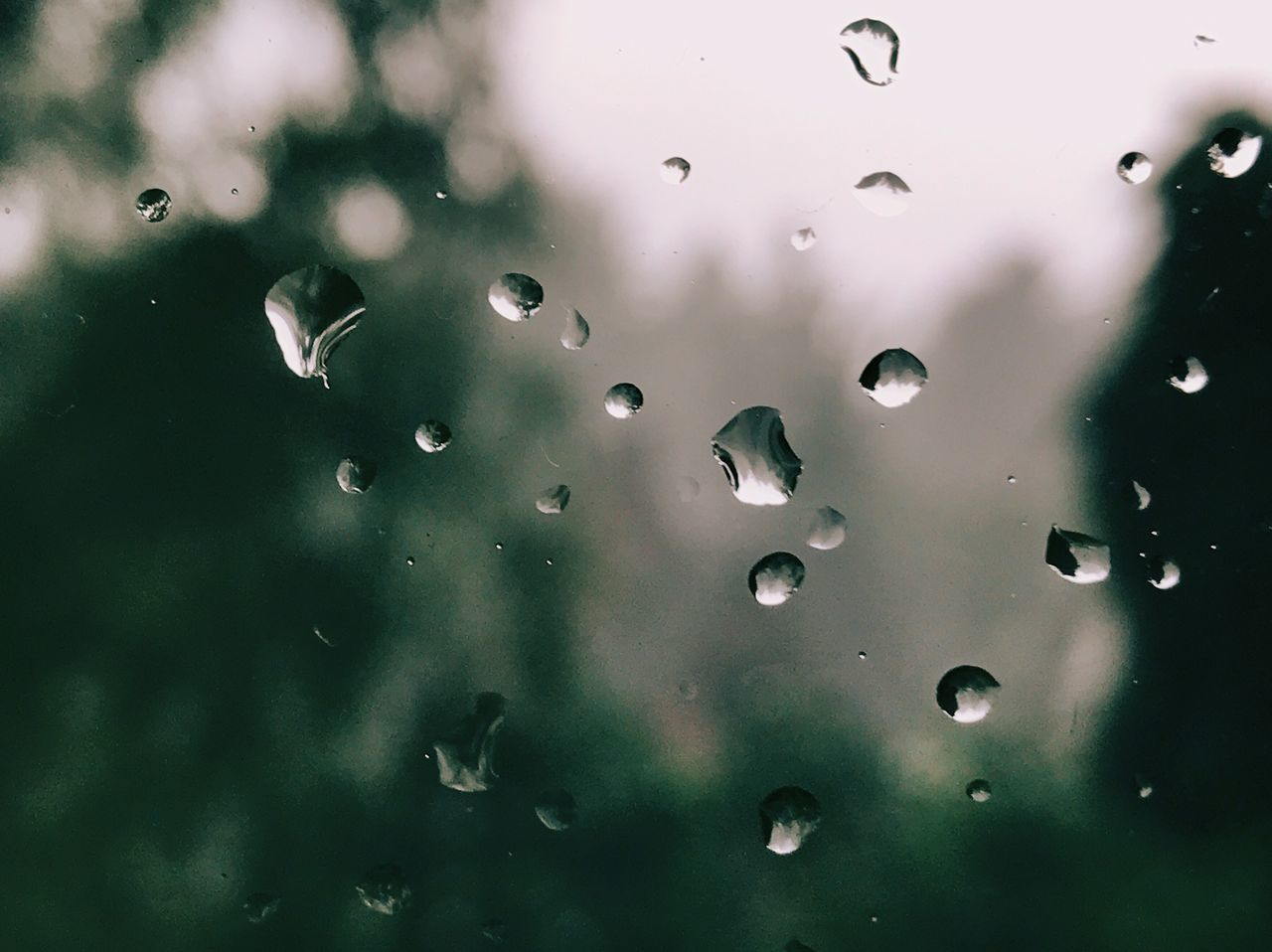 Drop Close-up Full Frame No People Water Backgrounds Green Color Indoors  Wet Day Nature