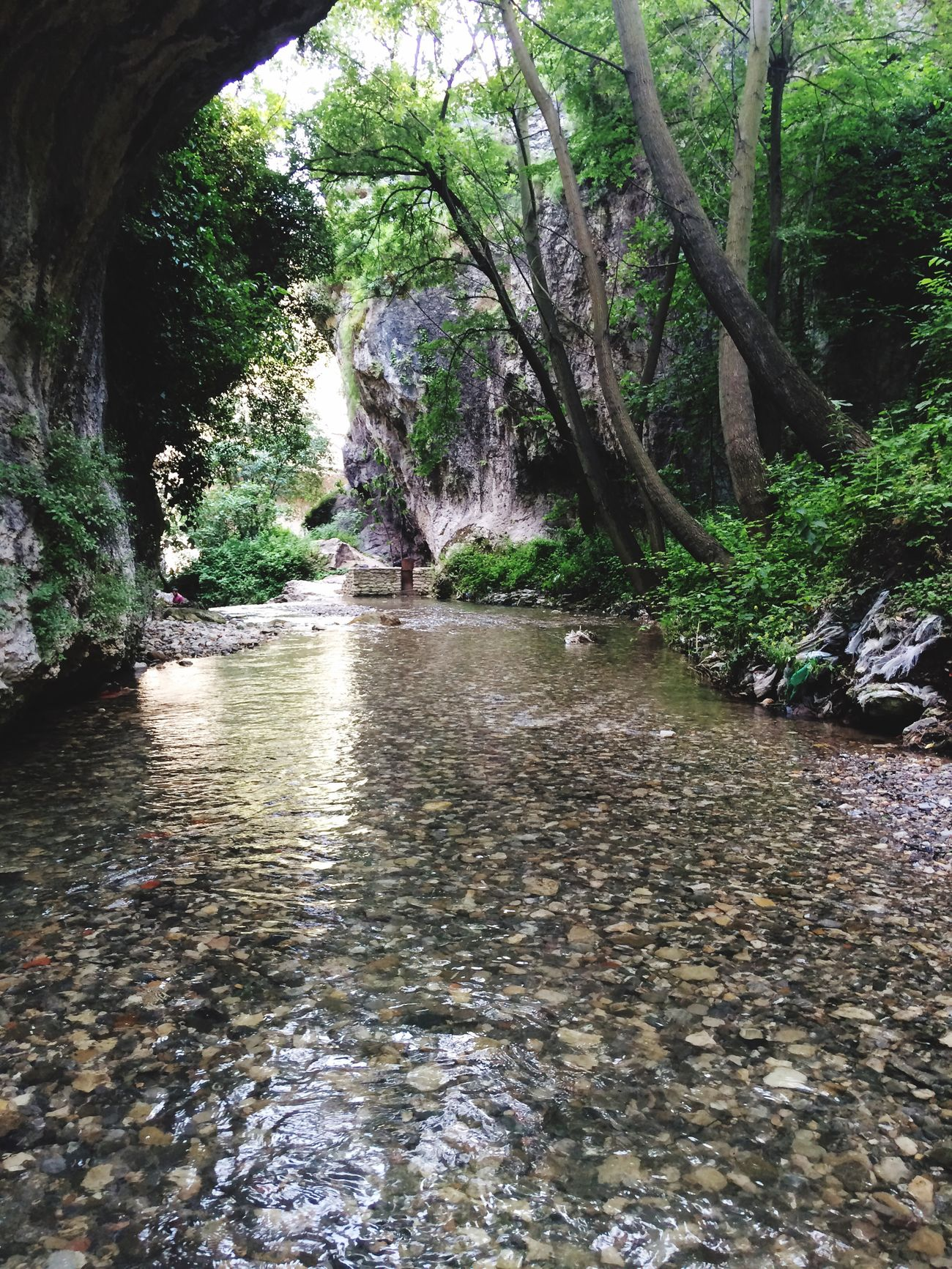 Doğa Dere çay Nehir Safranbolu Eskiçarşı Yeşil Nature Good EyeEm Gallery My Commute