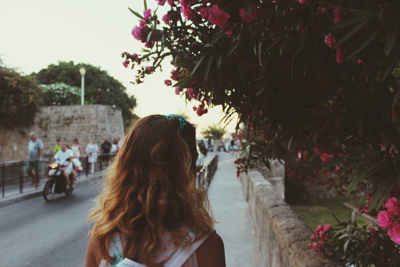 rear view, real people, one person, women, flower, tree, long hair, leisure activity, lifestyles, outdoors, day, nature, young women, young adult, adult, people