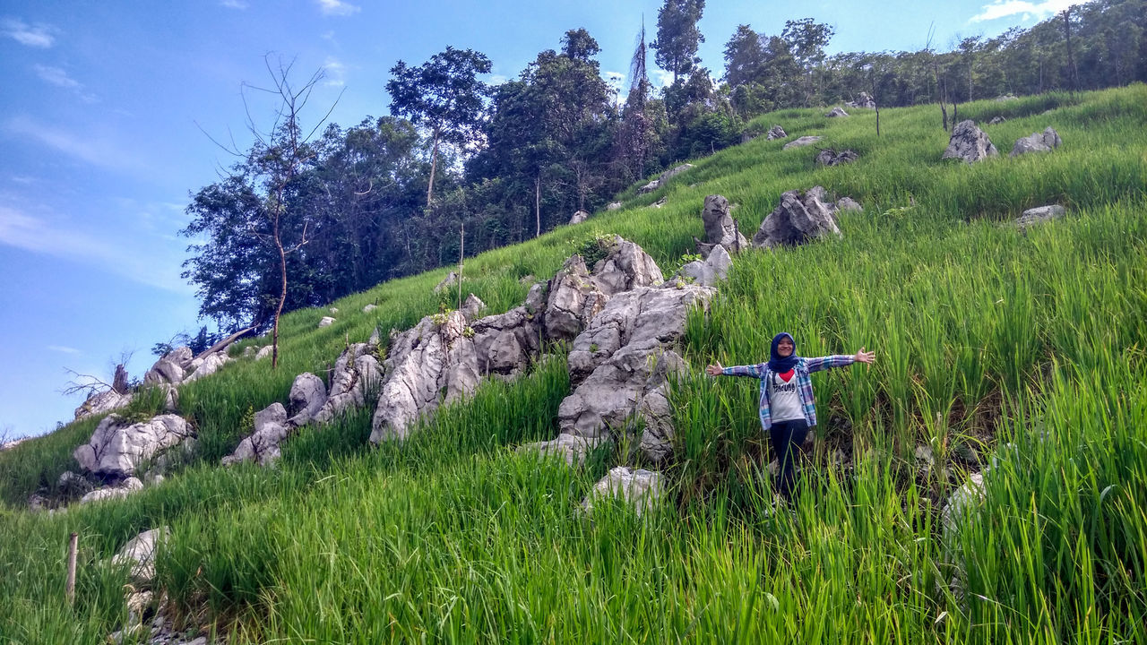 Manugal is rice paddy plantation system used by Dayak Meratus at South Kalimantan, the rice paddy are planted at hard and rocky soil at hill Adult Adults Only Adventure Beauty In Nature Blue Sky Day EyeEmNewHere Full Length Grass Green Color Hiking Leisure Activity Lifestyles Nature One Person Outdoors Paddy Field People Real People Rice Paddy Rocky Sky Traveling Tree