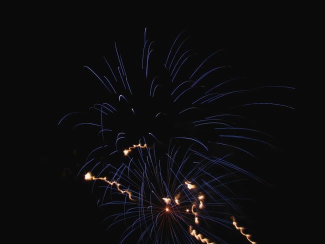 Colorful fireworks of various colors light up the night sky Anniversary Background Black Burst Celebrate Celebration Dark Display Event Exploding Explosion Festival Festive Fire Firework Fireworks Fourth Of July Holiday Isolated On Black Light New Year Night Pyrotechnics Show Sky