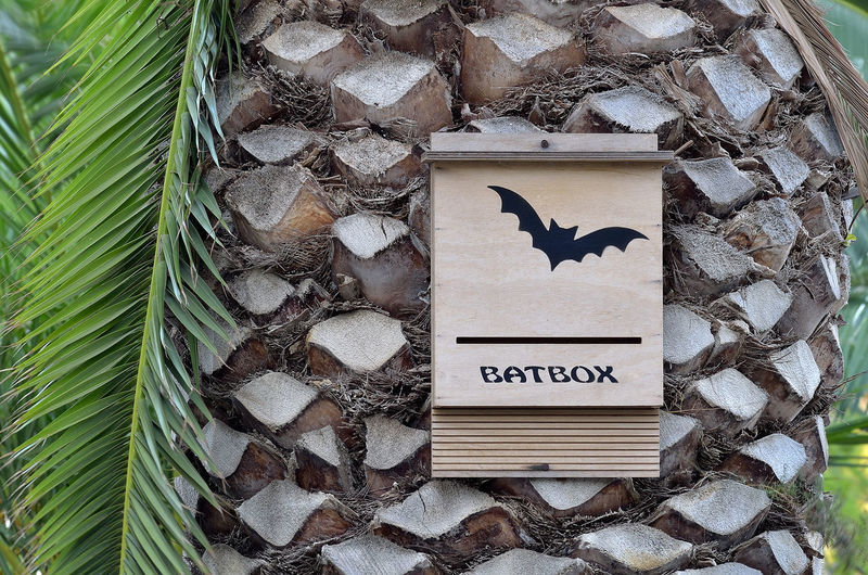 Animal Animal Themes Bat Bat Box Batbox Batman Bird Close-up Day Large Group Of Objects Nature No People Outdoors