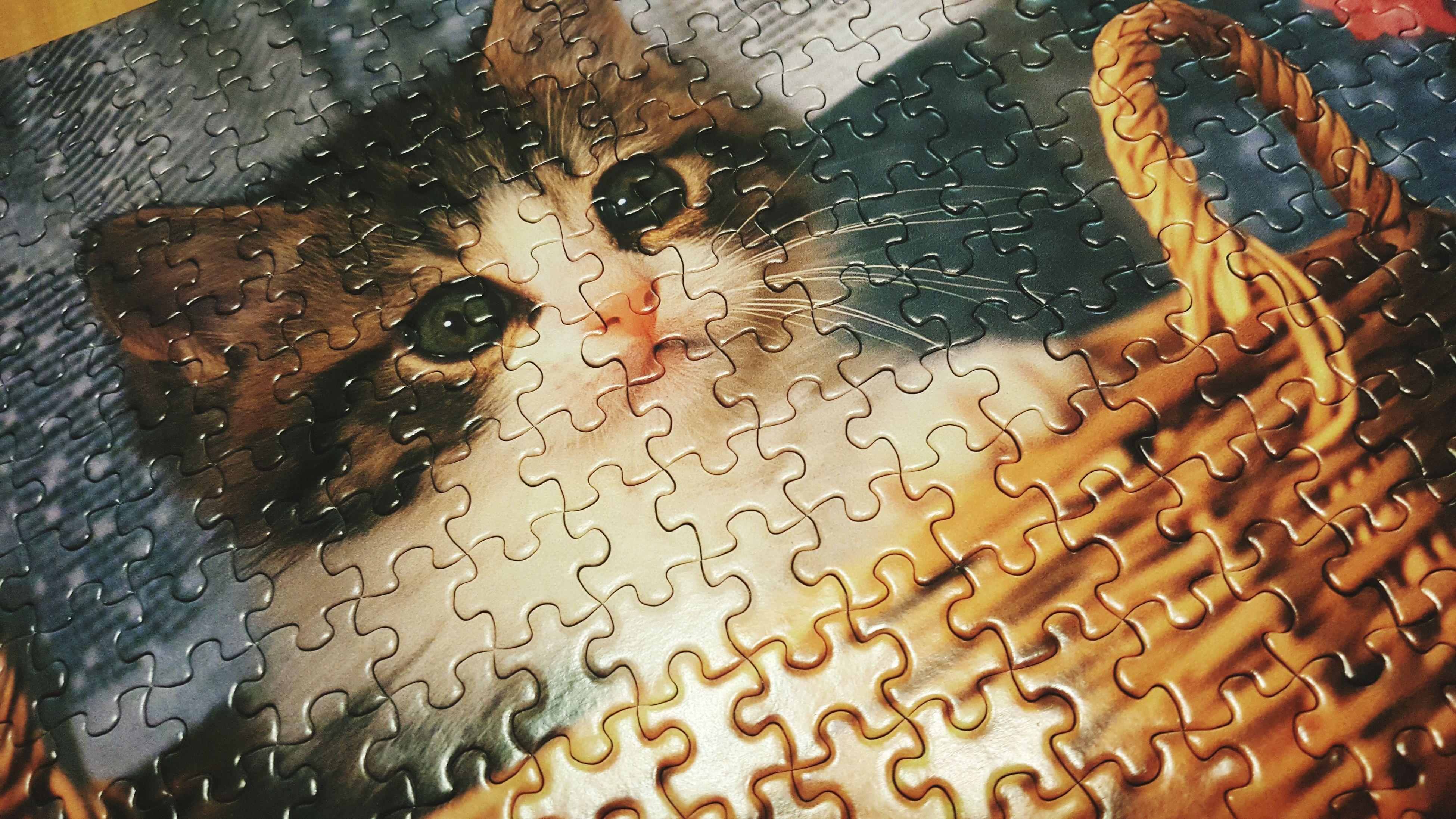 2시간 넘게 맞춘거같다 300pieces Jigsaw Puzzle 가볍게 시작한건데 생각외로 어려웠다 ㅜ ㅜ
